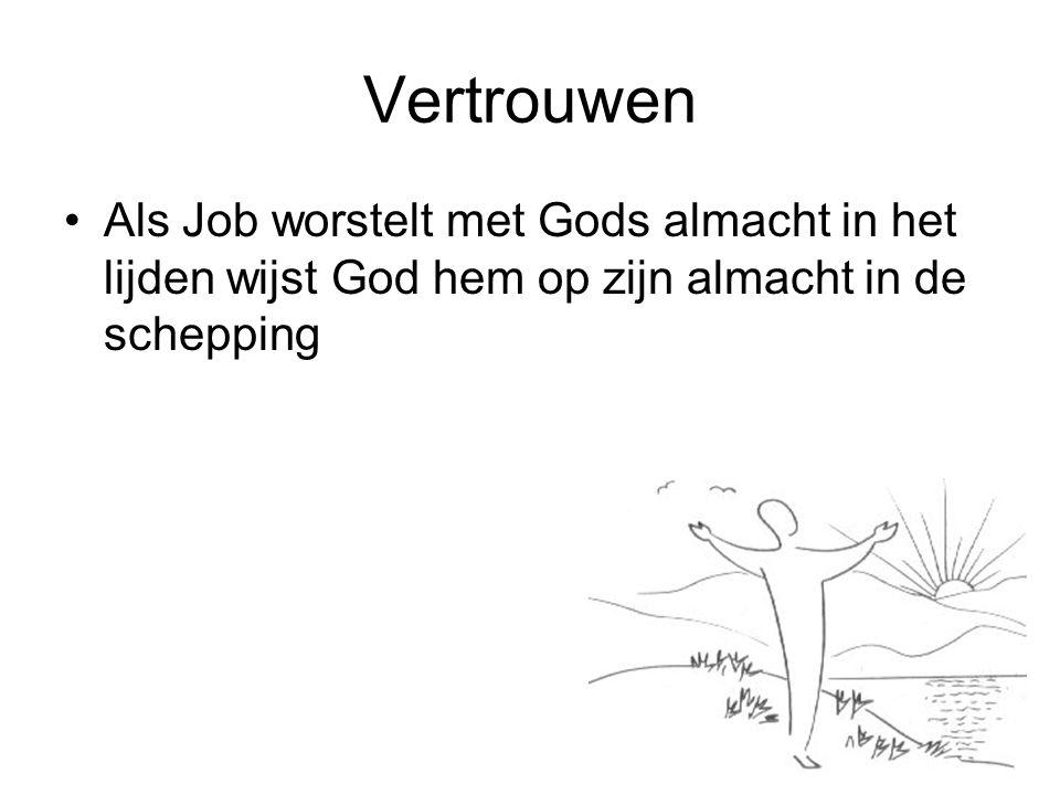 Vertrouwen Als Job worstelt met Gods almacht in het lijden wijst God hem op zijn almacht in de schepping