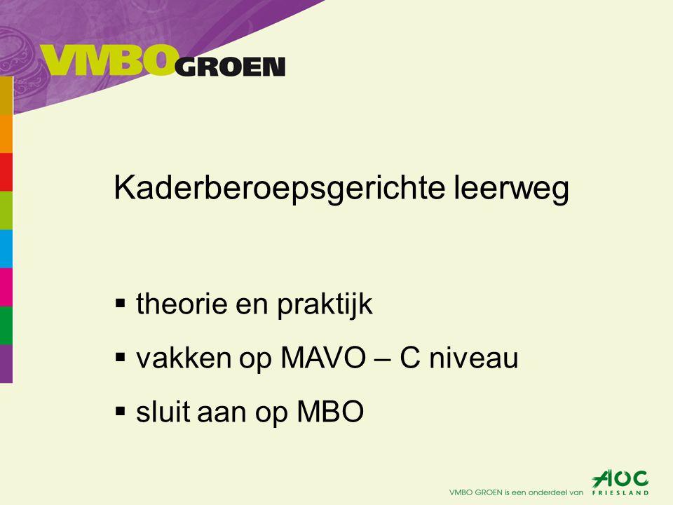Kaderberoepsgerichte leerweg  theorie en praktijk  vakken op MAVO – C niveau  sluit aan op MBO