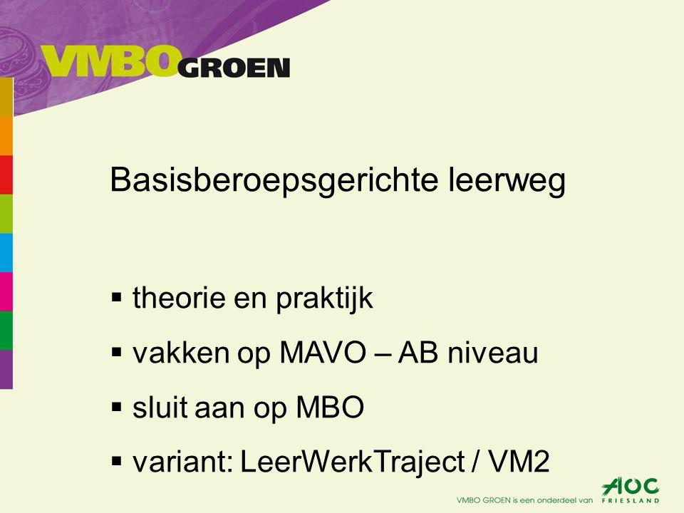 Basisberoepsgerichte leerweg  theorie en praktijk  vakken op MAVO – AB niveau  sluit aan op MBO  variant: LeerWerkTraject / VM2