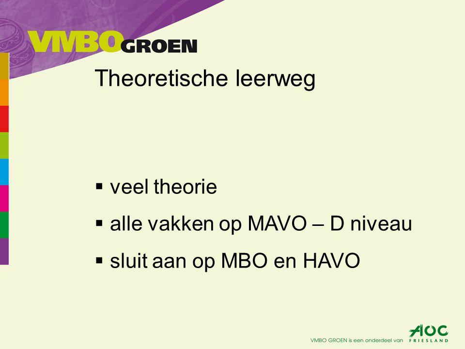 Theoretische leerweg  veel theorie  alle vakken op MAVO – D niveau  sluit aan op MBO en HAVO