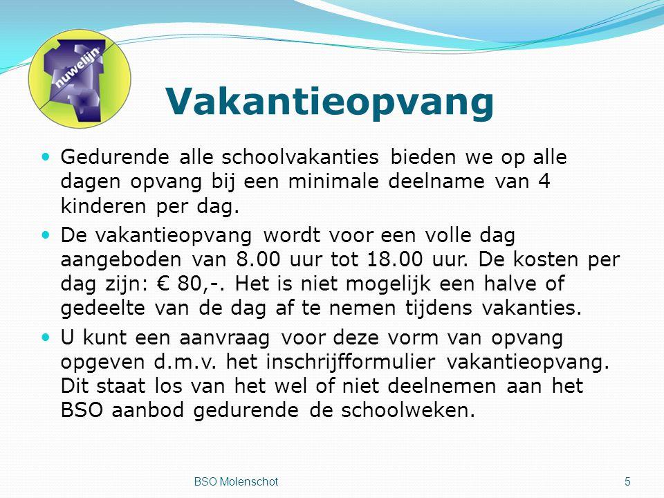 Vakantieopvang Gedurende alle schoolvakanties bieden we op alle dagen opvang bij een minimale deelname van 4 kinderen per dag.