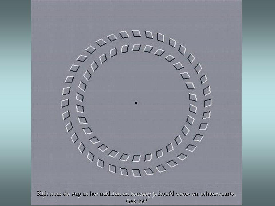 Kijk naar de stip in het midden en beweeg je hoofd voor- en achterwaarts. Gek hé?