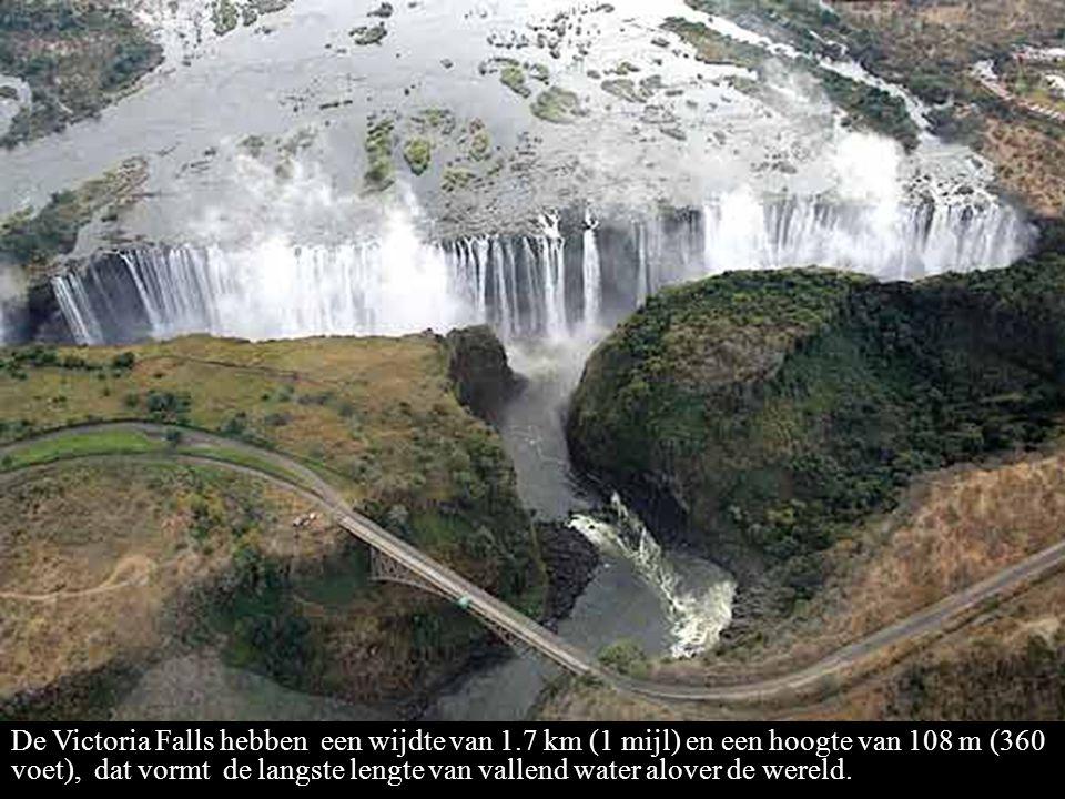 De Victoria Falls hebben een wijdte van 1.7 km (1 mijl) en een hoogte van 108 m (360 voet), dat vormt de langste lengte van vallend water alover de wereld.