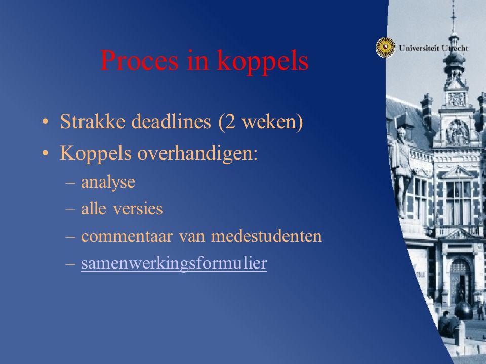 Proces in koppels Strakke deadlines (2 weken) Koppels overhandigen: –analyse –alle versies –commentaar van medestudenten –samenwerkingsformuliersamenw