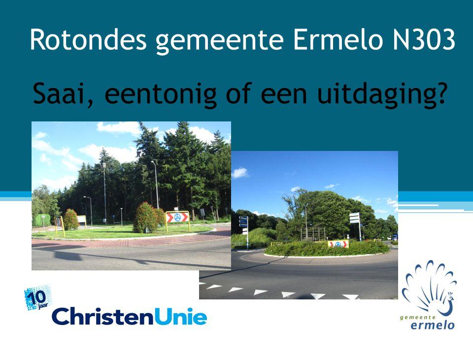 Rotondes gemeente Ermelo N303 Saai, eentonig of een uitdaging?