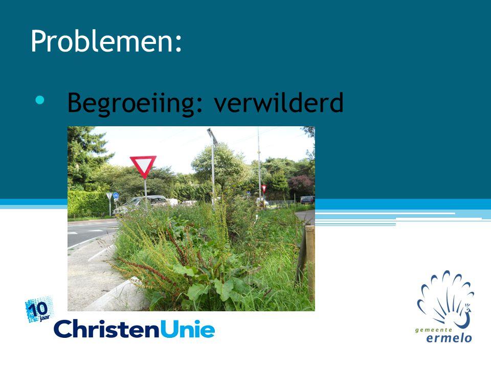 Problemen: Infrastructuur: geen entreewerking