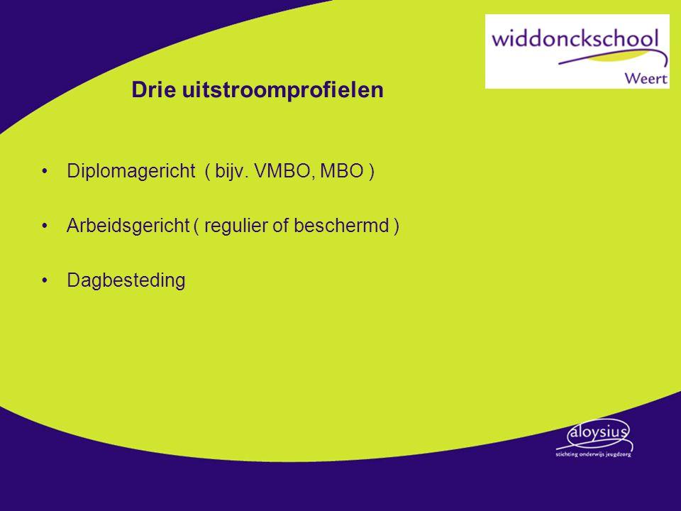 Drie uitstroomprofielen Diplomagericht ( bijv. VMBO, MBO ) Arbeidsgericht ( regulier of beschermd ) Dagbesteding
