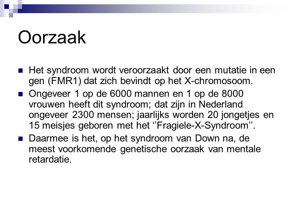 Oorzaak Het syndroom wordt veroorzaakt door een mutatie in een gen (FMR1) dat zich bevindt op het X-chromosoom.