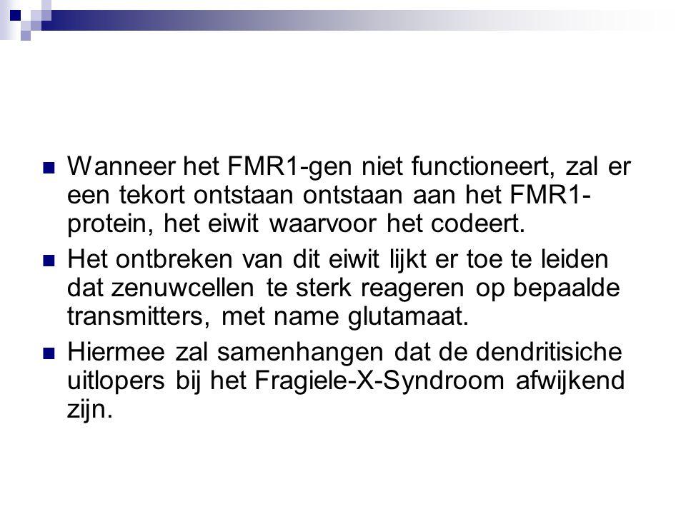Wanneer het FMR1-gen niet functioneert, zal er een tekort ontstaan ontstaan aan het FMR1- protein, het eiwit waarvoor het codeert.