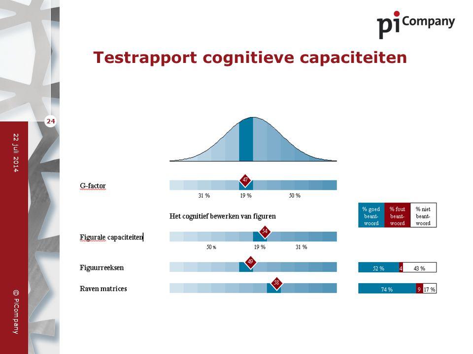 © PiCompany 22 juli 2014 24 Testrapport cognitieve capaciteiten