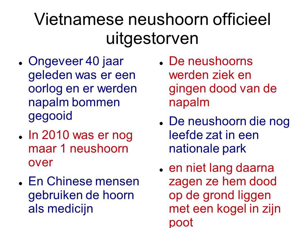 Vietnamese neushoorn officieel uitgestorven Ongeveer 40 jaar geleden was er een oorlog en er werden napalm bommen gegooid In 2010 was er nog maar 1 ne