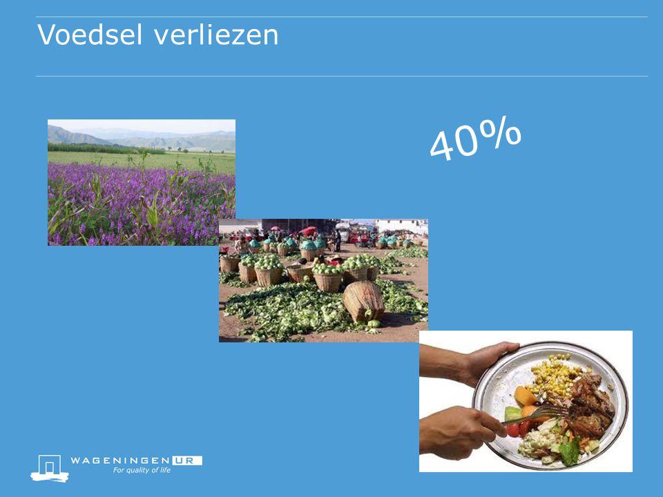 Voedsel verliezen 40%