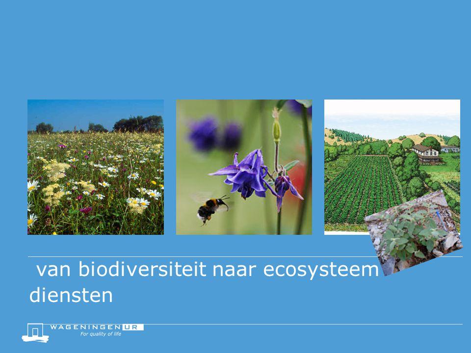van biodiversiteit naar ecosysteem diensten