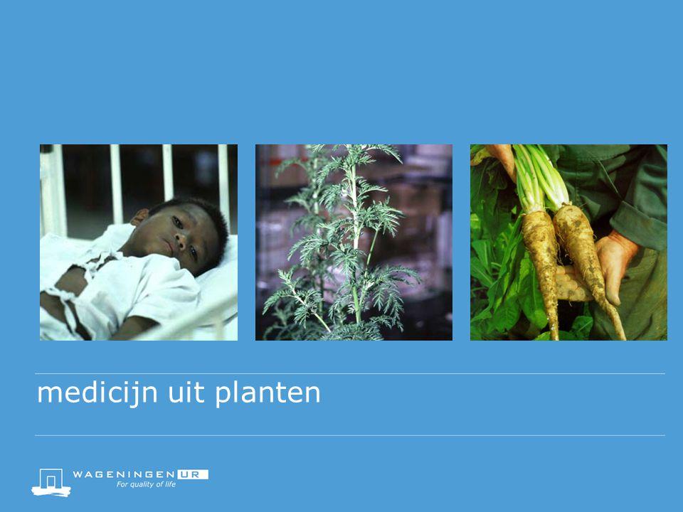 medicijn uit planten