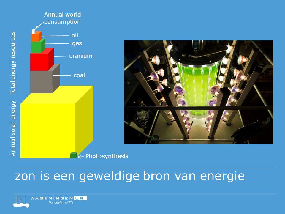 zon is een geweldige bron van energie Annual solar energy Total energy resources coal uranium gas oil Annual world consumption Photosynthesis