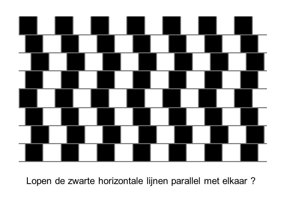 Lopen de zwarte horizontale lijnen parallel met elkaar ?