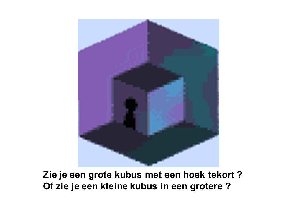 Zie je een grote kubus met een hoek tekort ? Of zie je een kleine kubus in een grotere ?