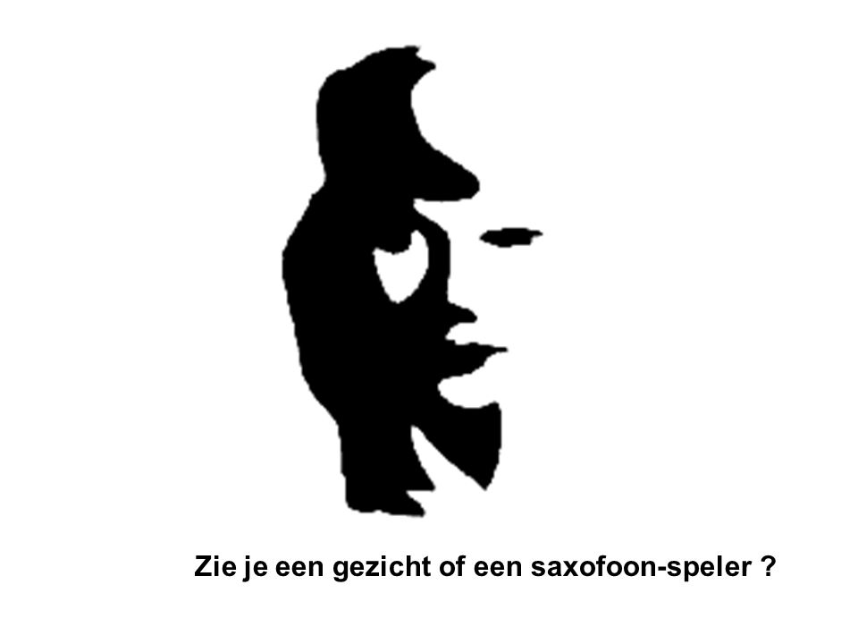 Zie je een gezicht of een saxofoon-speler ?