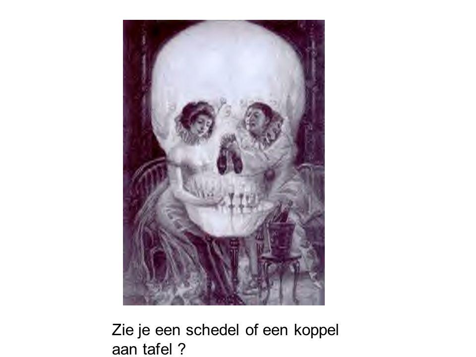 Zie je een schedel of een koppel aan tafel ?