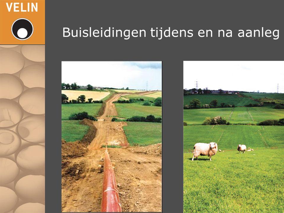 1.Belang ARR Regio  Economie / Petrochemie / Werkgelegenheid 2.