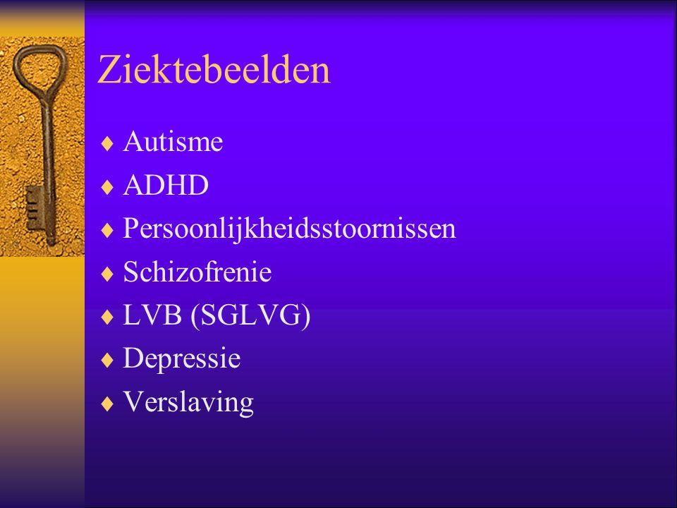 Ziektebeelden  Autisme  ADHD  Persoonlijkheidsstoornissen  Schizofrenie  LVB (SGLVG)  Depressie  Verslaving