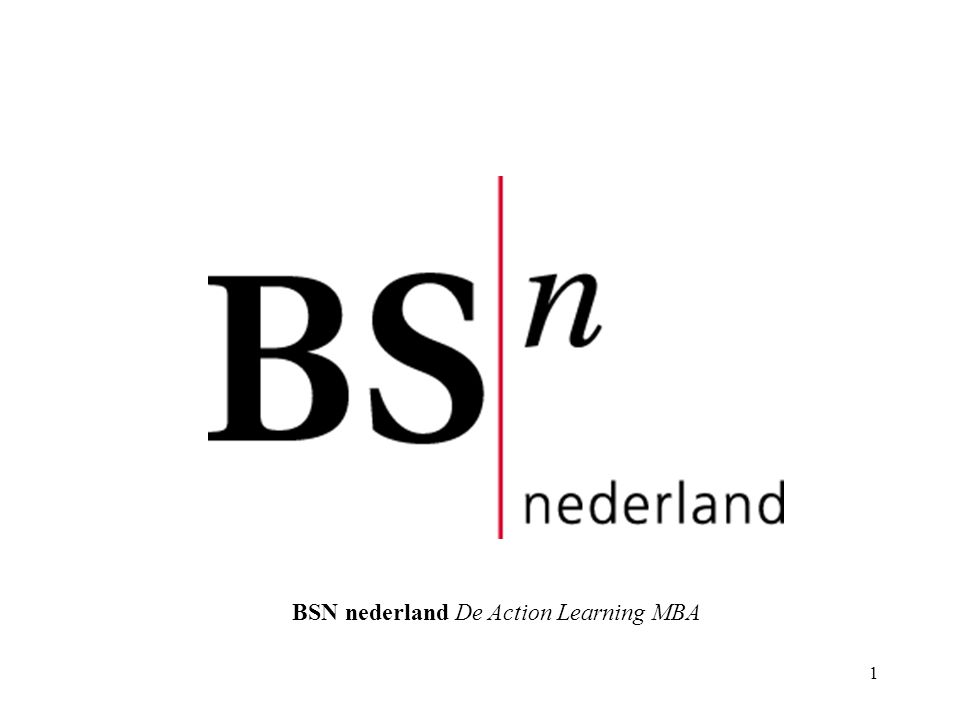 1 BSN nederland De Action Learning MBA
