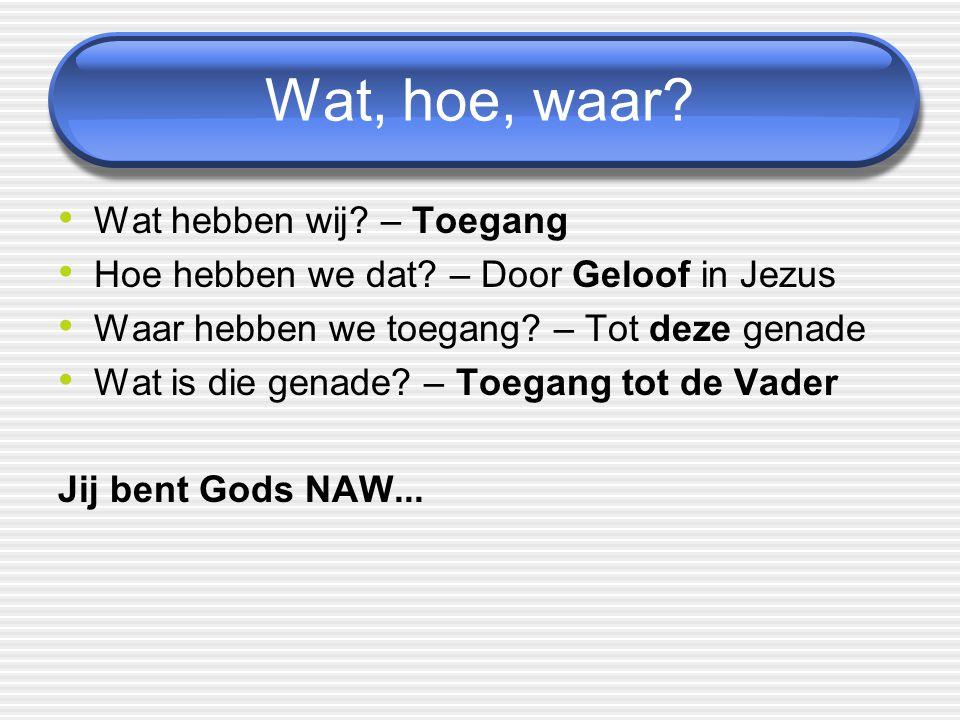 Wat, hoe, waar? Wat hebben wij? – Toegang Hoe hebben we dat? – Door Geloof in Jezus Waar hebben we toegang? – Tot deze genade Wat is die genade? – Toe