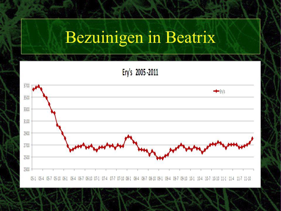 Bezuinigen in Beatrix