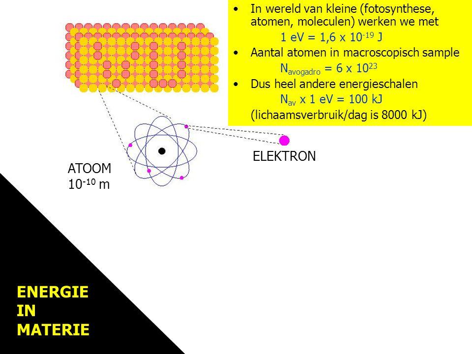 Materie MATERIE ELEKTRON ATOOM 10 -10 m In wereld van kleine (fotosynthese, atomen, moleculen) werken we met 1 eV = 1,6 x 10 -19 J Aantal atomen in macroscopisch sample N avogadro = 6 x 10 23 Dus heel andere energieschalen N av x 1 eV = 100 kJ (lichaamsverbruik/dag is 8000 kJ) ENERGIE IN MATERIE