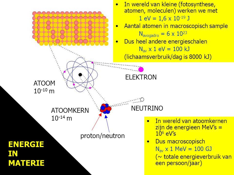 Materie MATERIE ELEKTRON ATOOM 10 -10 m MATERIE ELEKTRON ATOOM 10 -10 m ATOOMKERN 10 -14 m NEUTRINO In wereld van atoomkernen zijn de energieen MeV's = 10 6 eV's Dus macroscopisch N av x 1 MeV = 100 GJ (~ totale energieverbruik van een persoon/jaar) In wereld van kleine (fotosynthese, atomen, moleculen) werken we met 1 eV = 1,6 x 10 -19 J Aantal atomen in macroscopisch sample N avogadro = 6 x 10 23 Dus heel andere energieschalen N av x 1 eV = 100 kJ (lichaamsverbruik/dag is 8000 kJ) proton/neutron ENERGIE IN MATERIE