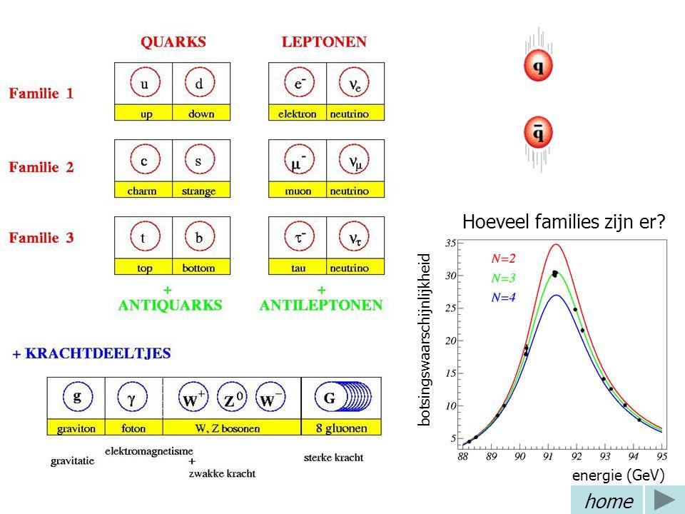 Standaard model 3 deeltjesfamilies 4 fundamentele krachten Bijbehorende krachtdeeltjes Hoeveel families zijn er.