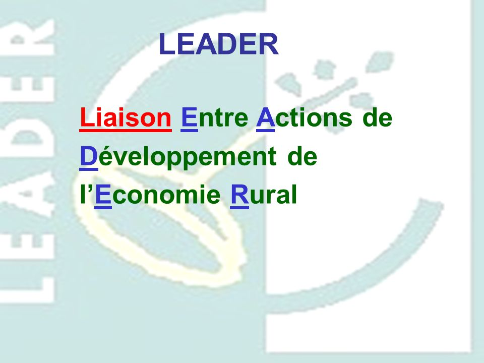Liaison Entre Actions de Développement de l'Economie Rural LEADER