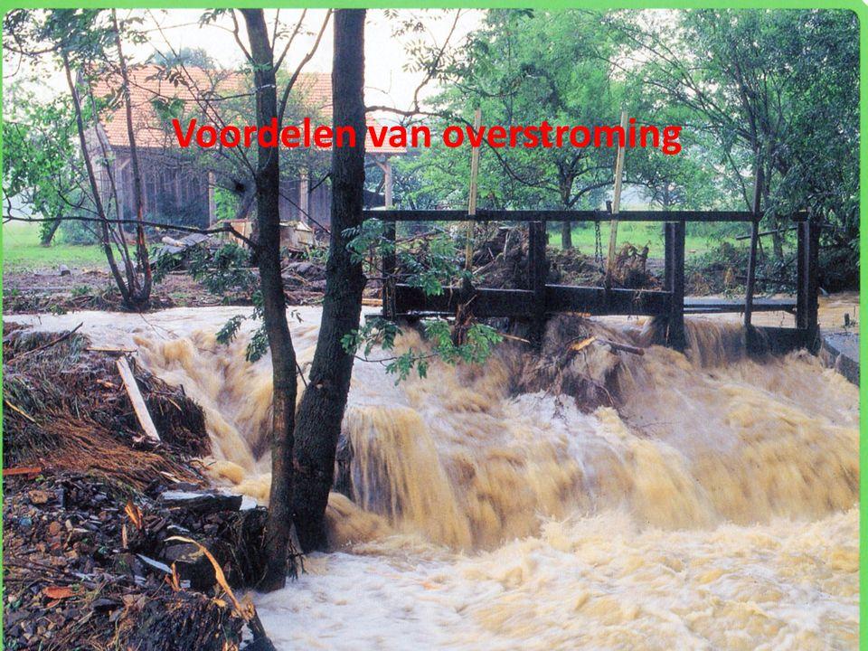 Waar komen veel overstromingen voor