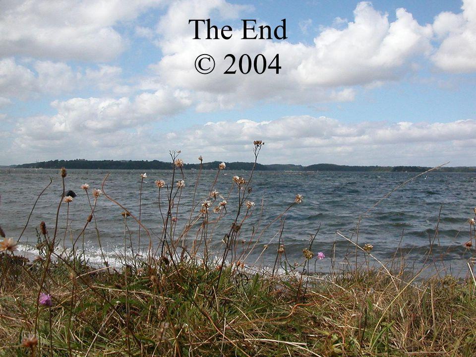 The End © 2004 Software: Windows 76 1ste Camera: Ons Twan Productie: Boer Harms (en ik hou van disco) Catering: BBQ Sledge Hammer Tekst & Vormgeving: