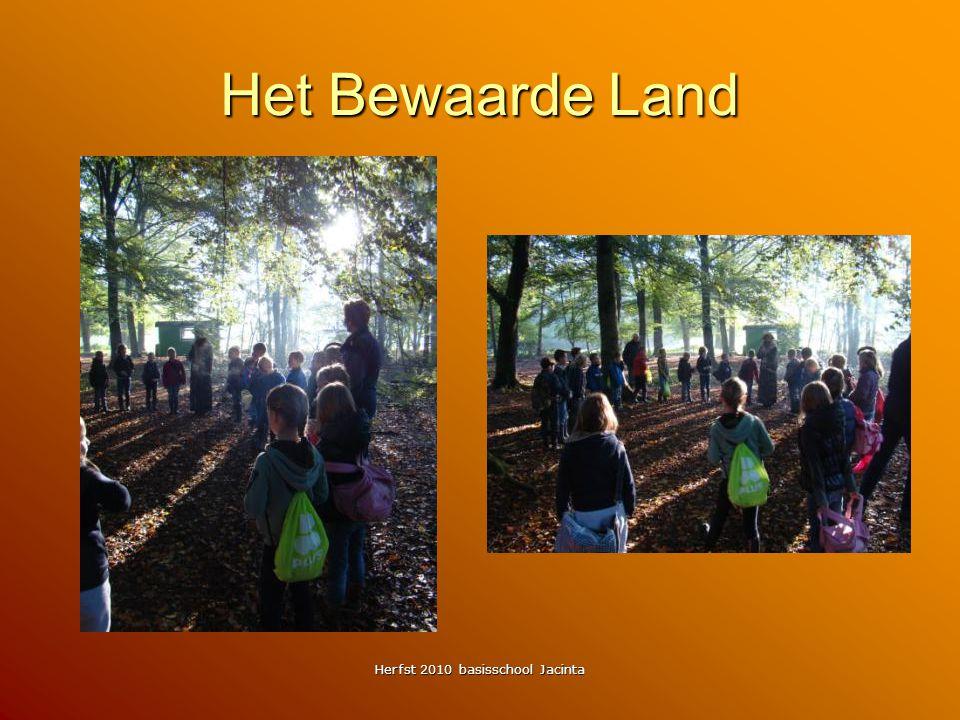 Herfst 2010 basisschool Jacinta Het Bewaarde Land