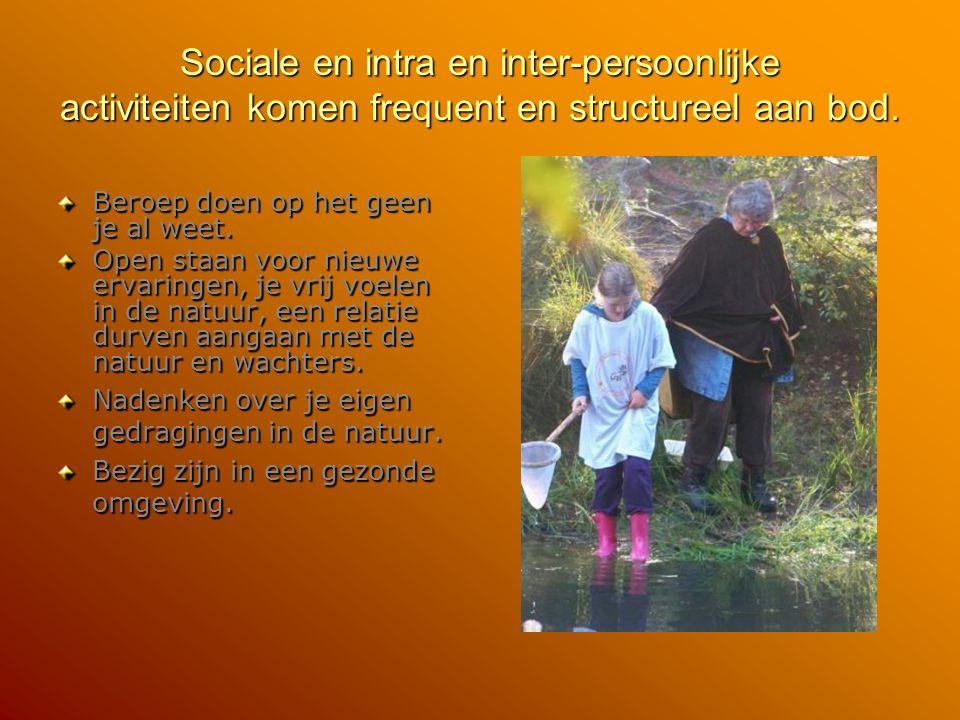 Sociale en intra en inter-persoonlijke activiteiten komen frequent en structureel aan bod. Beroep doen op het geen je al weet. Open staan voor nieuwe