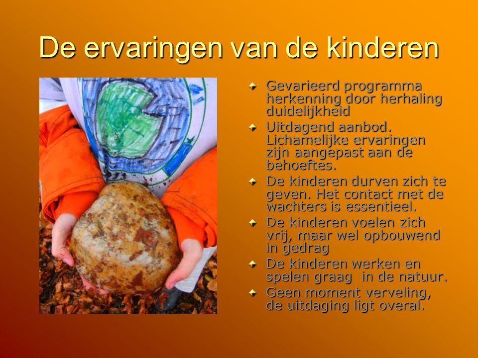 De ervaringen van de kinderen Gevarieerd programma herkenning door herhaling duidelijkheid Uitdagend aanbod. Lichamelijke ervaringen zijn aangepast aa