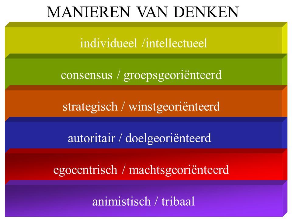individueel /intellectueel MANIEREN VAN DENKEN consensus / groepsgeoriënteerd strategisch / winstgeoriënteerd autoritair / doelgeoriënteerd egocentris