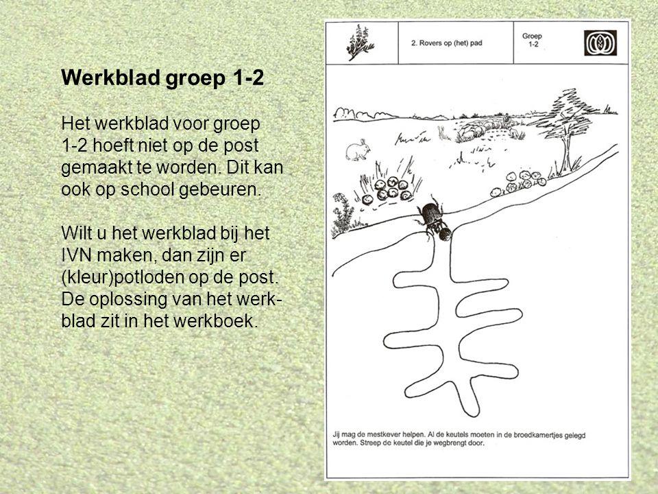 Werkblad groep 1-2 Het werkblad voor groep 1-2 hoeft niet op de post gemaakt te worden. Dit kan ook op school gebeuren. Wilt u het werkblad bij het IV