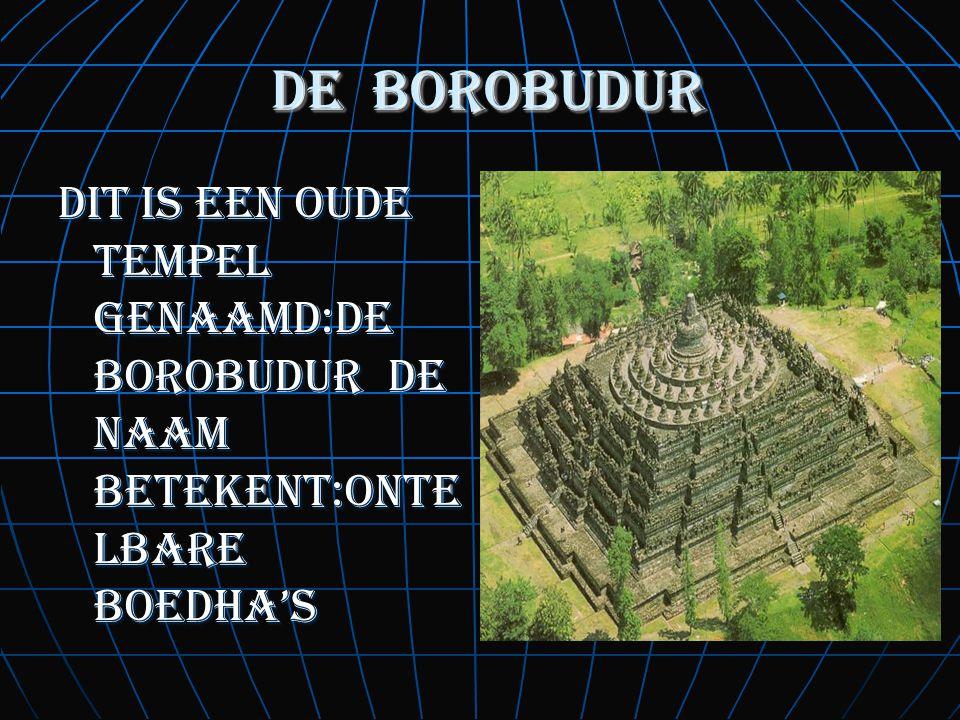 de borobudur de borobudur dit is een oude tempel genaamd:de borobudur de naam betekent:onte lbare boedha's