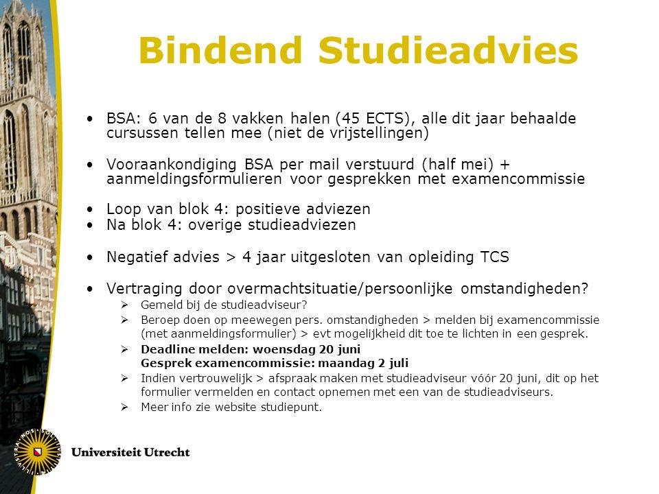 Eindwerkstuk  Binnen hoofdrichting (niv.3)  Verschillen per opleiding (o.a.