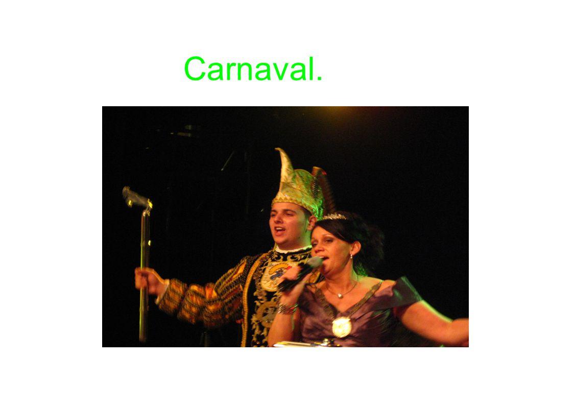 Carnavalsvrijdag Ieder jaar is er weer carnaval op B.S.