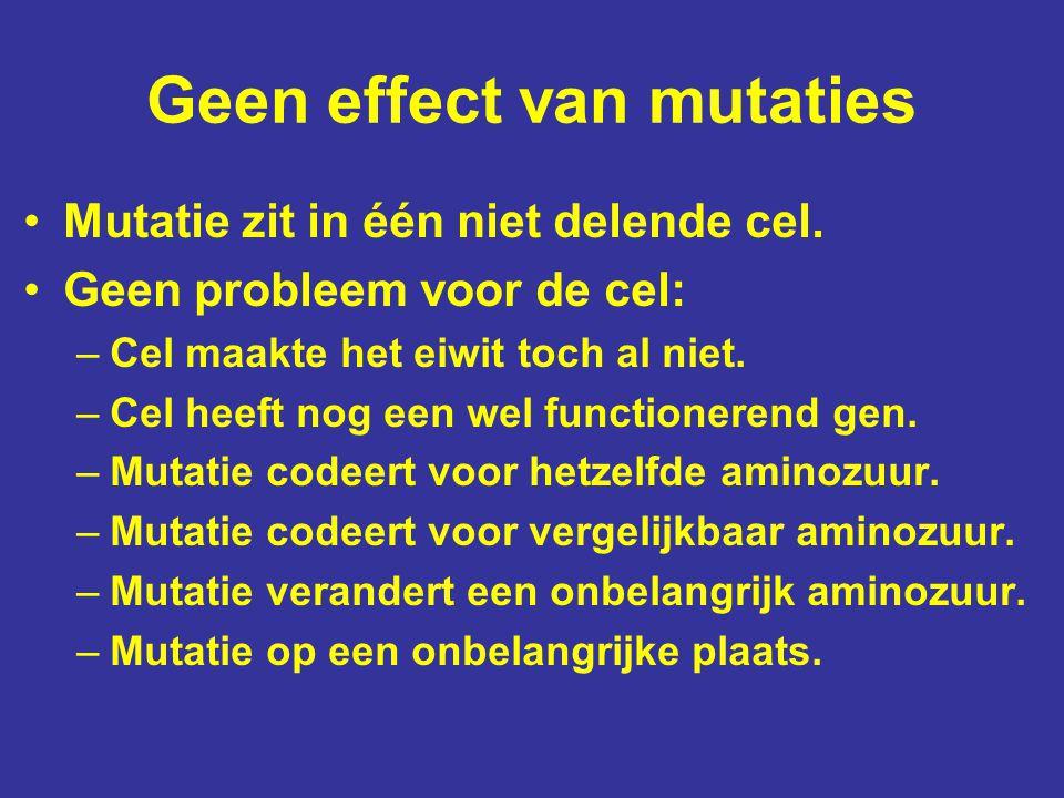 Geen effect van mutaties Mutatie zit in één niet delende cel. Geen probleem voor de cel: –Cel maakte het eiwit toch al niet. –Cel heeft nog een wel fu