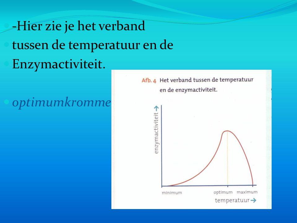 -Hier zie je het verband tussen de temperatuur en de Enzymactiviteit. optimumkromme
