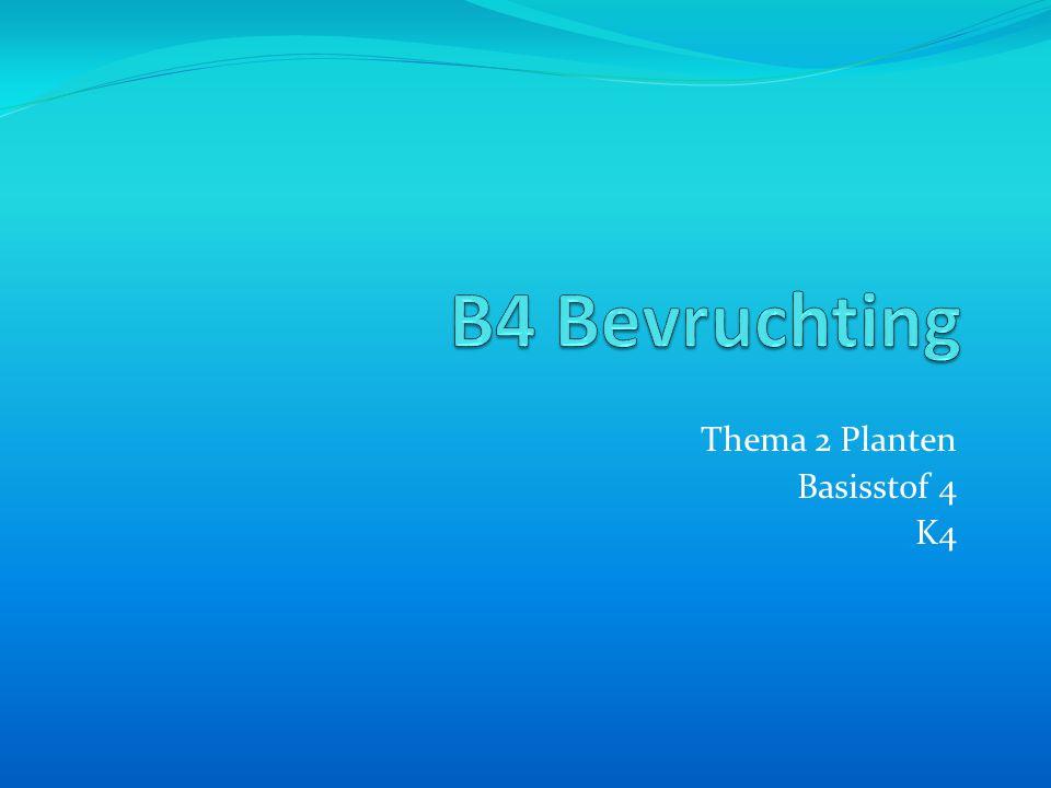 Thema 2 Planten Basisstof 4 K4