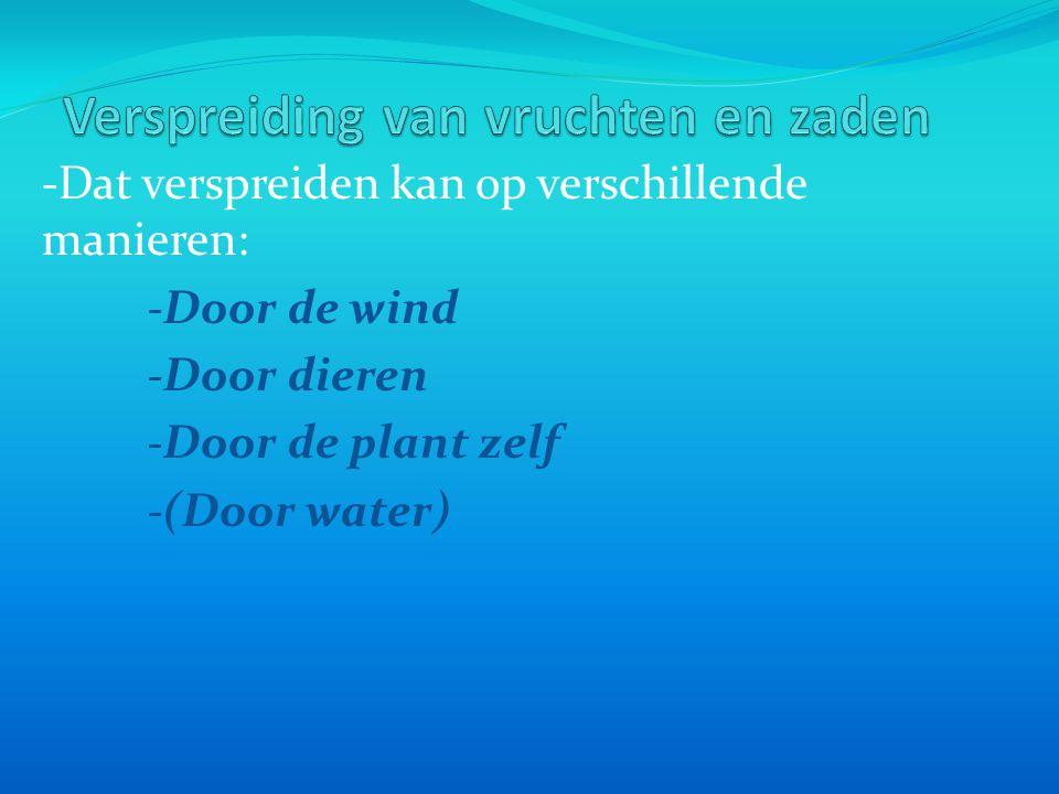 -Dat verspreiden kan op verschillende manieren: -Door de wind -Door dieren -Door de plant zelf -(Door water)