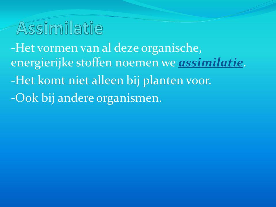 -Het vormen van al deze organische, energierijke stoffen noemen we assimilatie.