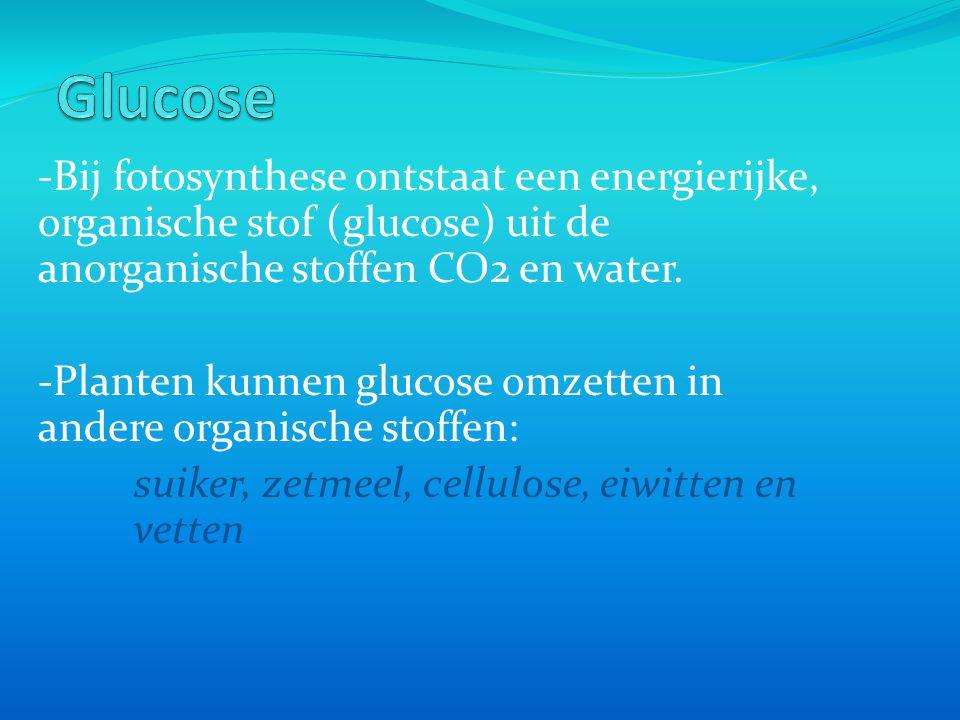 -Bij fotosynthese ontstaat een energierijke, organische stof (glucose) uit de anorganische stoffen CO2 en water.