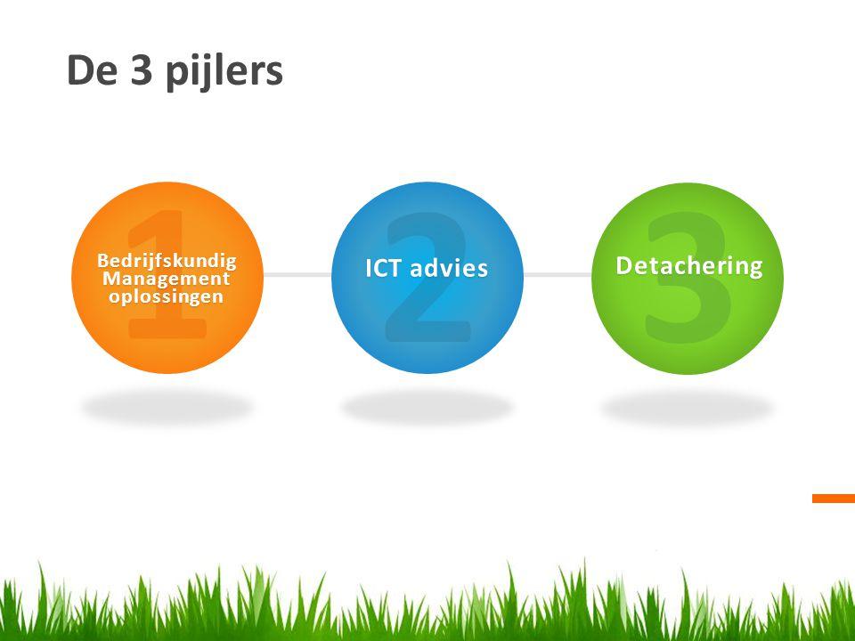 De 3 pijlers 1BedrijfskundigManagementoplossingen 2 ICT advies 3Detachering