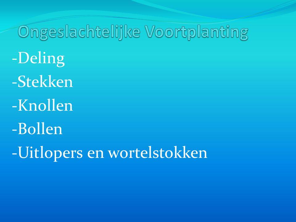 -Deling -Stekken -Knollen -Bollen -Uitlopers en wortelstokken
